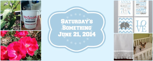 Saturday's Something June 21, 2014