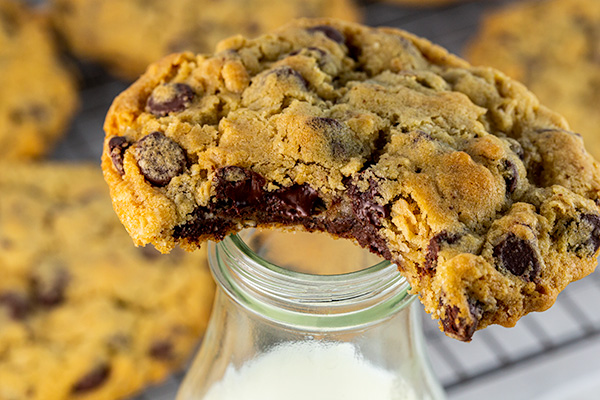 oatmeal chocolate chip cookies 6